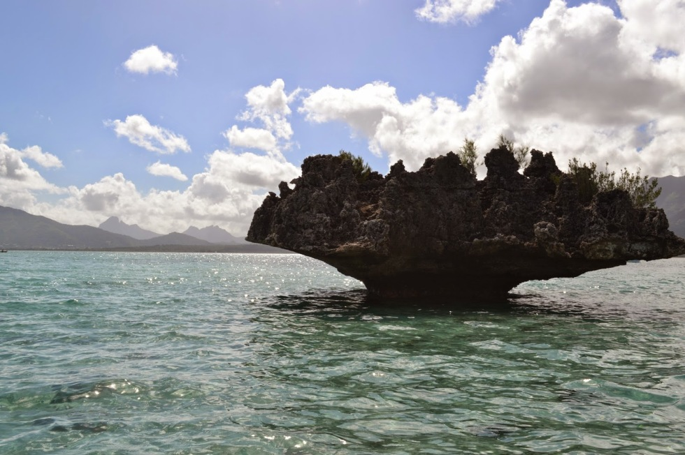The 'mushroom' rock near the Ile aux Benitiers
